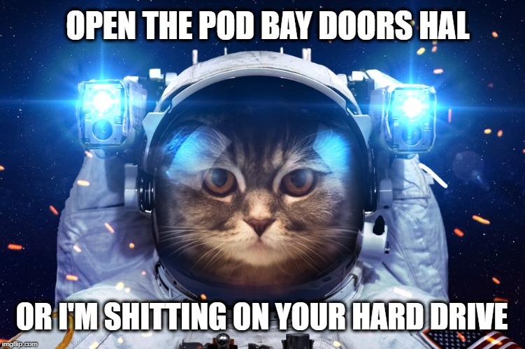OPEN THE POD BAY DOORS HAL OR I'M SHITTING ON YOUR HARD DRIVE | image tagged in cat,astronaut,2001 a space odyssey,stanley kubrick,grumpy cat,hard drive | made w/ Imgflip meme maker