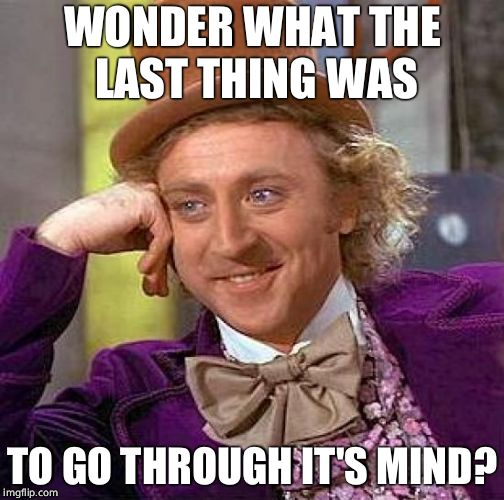 Creepy Condescending Wonka Meme | WONDER WHAT THE LAST THING WAS TO GO THROUGH IT'S MIND? | image tagged in memes,creepy condescending wonka | made w/ Imgflip meme maker