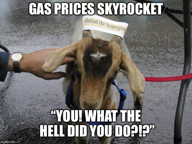 "Sinbad the Scapegoat  | GAS PRICES SKYROCKET ""YOU! WHAT THE HELL DID YOU DO?!?"" 