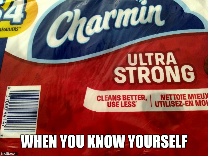 WHEN YOU KNOW YOURSELF | image tagged in toilet paper | made w/ Imgflip meme maker