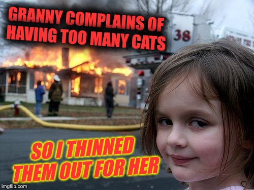 Disaster Girl Meme | GRANNY COMPLAINS OF HAVING TOO MANY CATS SO I THINNED THEM OUT FOR HER | image tagged in memes,disaster girl | made w/ Imgflip meme maker
