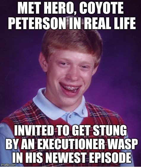 Sorry, but NOPE. | MET HERO, COYOTE PETERSON IN REAL LIFE INVITED TO GET STUNG BY AN EXECUTIONER WASP IN HIS NEWEST EPISODE | image tagged in memes,bad luck brian | made w/ Imgflip meme maker