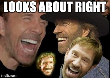 Chuck Norris LOL | LOOKS ABOUT RIGHT | image tagged in chuck norris lol | made w/ Imgflip meme maker