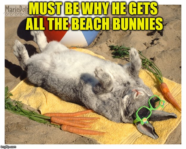 MUST BE WHY HE GETS ALL THE BEACH BUNNIES | made w/ Imgflip meme maker