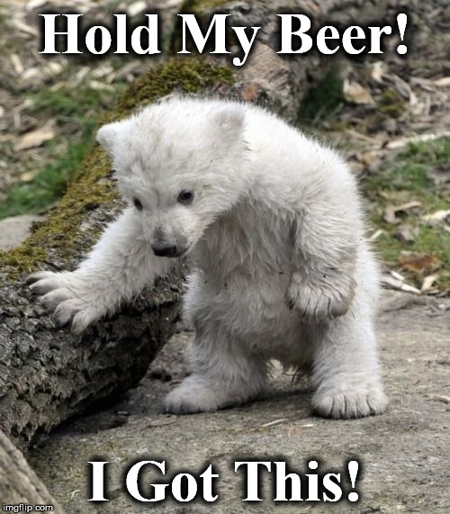 Hold My Beer! I Got This! | image tagged in bee | made w/ Imgflip meme maker