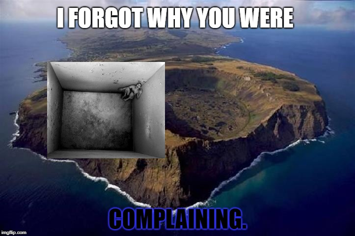 I FORGOT WHY YOU WERE COMPLAINING. | image tagged in easter island | made w/ Imgflip meme maker