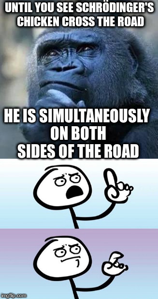 Why did Schrödinger's chicken cross the road? | UNTIL YOU SEE SCHRÖDINGER'S CHICKEN CROSS THE ROAD HE IS SIMULTANEOUSLY ON BOTH SIDES OF THE ROAD | image tagged in humor,question gorilla,question guy,non-political,philosopy,quantum physics | made w/ Imgflip meme maker