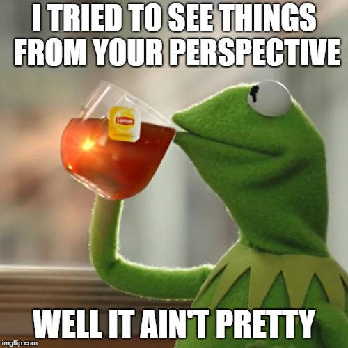 But Thats None Of My Business Meme | I TRIED TO SEE THINGS FROM YOUR PERSPECTIVE WELL IT AIN'T PRETTY | image tagged in memes,but thats none of my business,kermit the frog | made w/ Imgflip meme maker