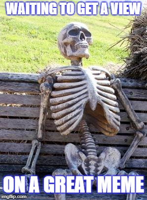 Waiting Skeleton Meme | WAITING TO GET A VIEW ON A GREAT MEME | image tagged in memes,waiting skeleton | made w/ Imgflip meme maker