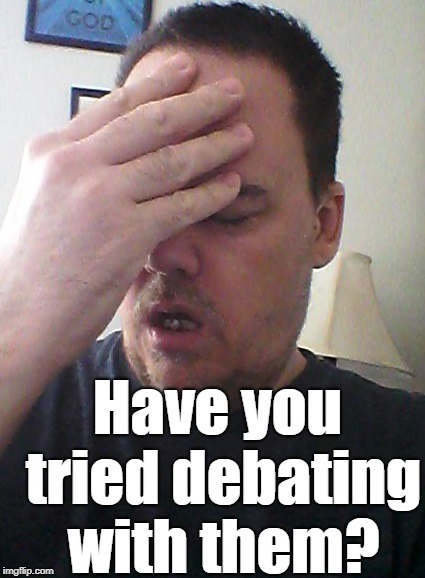 face palm | Have you tried debating with them? | image tagged in face palm | made w/ Imgflip meme maker