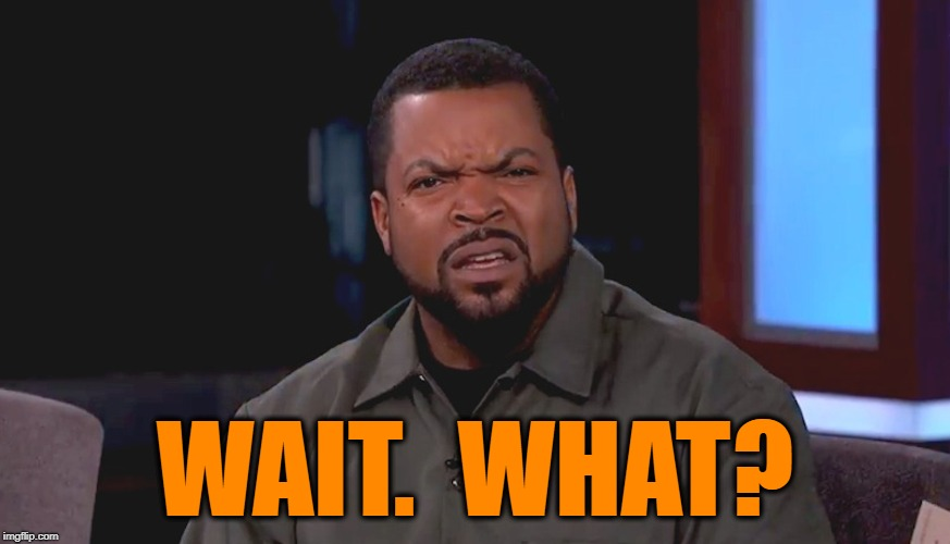 Really? Ice Cube | WAIT.  WHAT? | image tagged in really ice cube | made w/ Imgflip meme maker