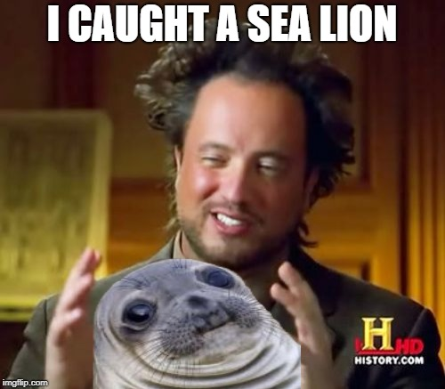 Ancient Aliens Meme | I CAUGHT A SEA LION | image tagged in memes,ancient aliens | made w/ Imgflip meme maker