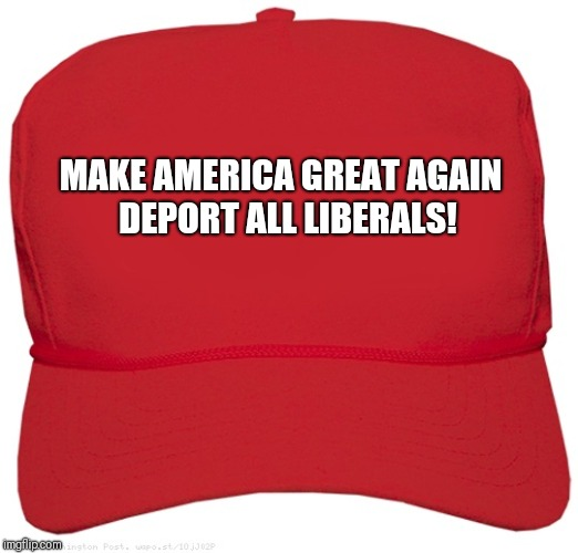blank red MAGA hat | MAKE AMERICA GREAT AGAIN   DEPORT ALL LIBERALS! | image tagged in blank red maga hat | made w/ Imgflip meme maker