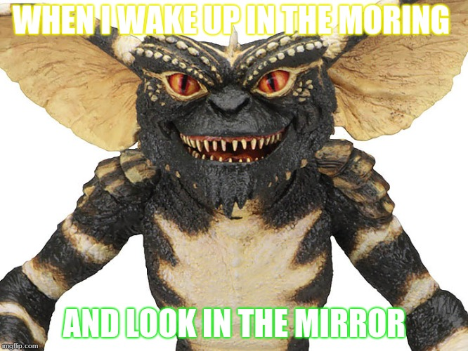 Mornings | WHEN I WAKE UP IN THE MORING AND LOOK IN THE MIRROR | image tagged in gremlins | made w/ Imgflip meme maker