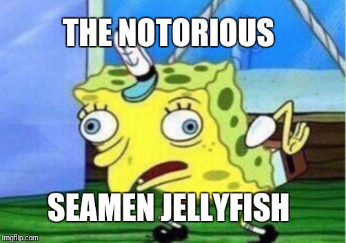 Mocking Spongebob Meme | THE NOTORIOUS SEAMEN JELLYFISH | image tagged in memes,mocking spongebob | made w/ Imgflip meme maker