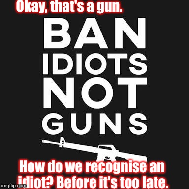 Okay, that's a gun. How do we recognise an idiot? Before it's too late. | image tagged in ban idiots not guns | made w/ Imgflip meme maker