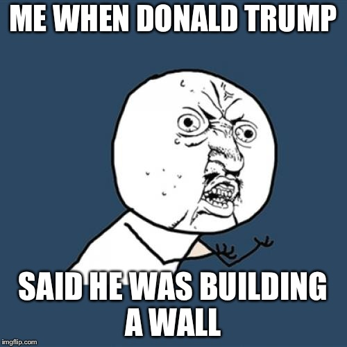 Y U No Meme | ME WHEN DONALD TRUMP SAID HE WAS BUILDING A WALL | image tagged in memes,y u no | made w/ Imgflip meme maker