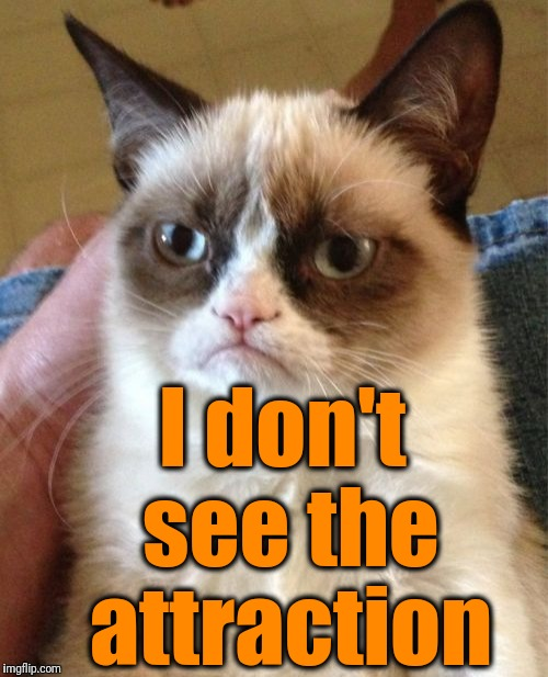 Grumpy Cat Meme | I don't see the attraction | image tagged in memes,grumpy cat | made w/ Imgflip meme maker