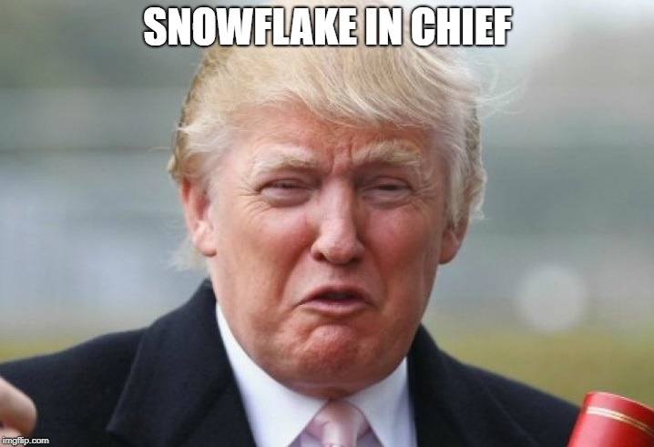 Trump Crybaby | SNOWFLAKE IN CHIEF | image tagged in trump crybaby | made w/ Imgflip meme maker