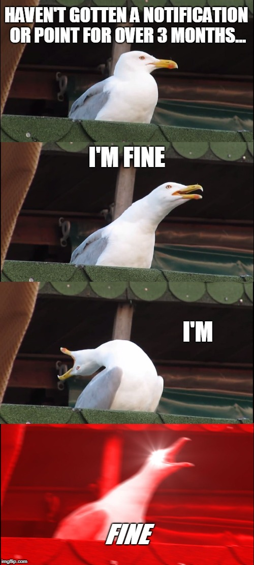Inhaling Seagull Meme | HAVEN'T GOTTEN A NOTIFICATION OR POINT FOR OVER 3 MONTHS... I'M FINE I'M FINE | image tagged in memes,inhaling seagull | made w/ Imgflip meme maker