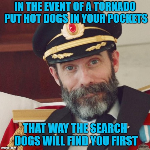 And you will have a life saving snack!!! | IN THE EVENT OF A TORNADO PUT HOT DOGS IN YOUR POCKETS THAT WAY THE SEARCH DOGS WILL FIND YOU FIRST | image tagged in captain obvious,memes,tornado,funny,hot dogs,dogs | made w/ Imgflip meme maker