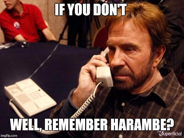 Chuck Norris Phone Meme | IF YOU DON'T WELL, REMEMBER HARAMBE? | image tagged in memes,chuck norris phone,chuck norris | made w/ Imgflip meme maker