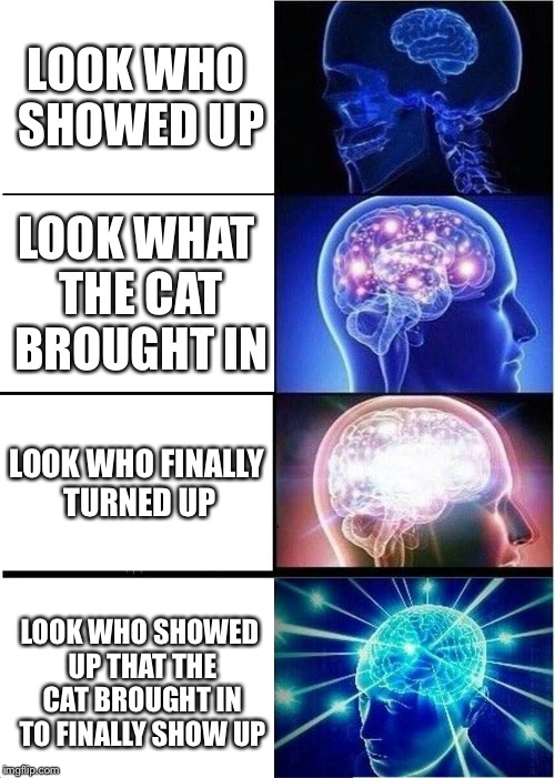 Expanding Brain Meme | LOOK WHO SHOWED UP LOOK WHAT THE CAT BROUGHT IN LOOK WHO FINALLY TURNED UP LOOK WHO SHOWED UP THAT THE CAT BROUGHT IN TO FINALLY SHOW UP | image tagged in memes,expanding brain | made w/ Imgflip meme maker