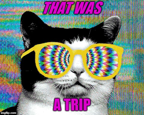 THAT WAS A TRIP | made w/ Imgflip meme maker