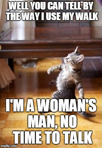 Cool Cat Stroll Meme | WELL YOU CAN TELL BY THE WAY I USE MY WALK I'M A WOMAN'S MAN, NO TIME TO TALK | image tagged in memes,cool cat stroll | made w/ Imgflip meme maker