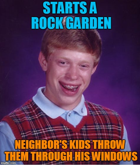 Bad Luck Brian Meme | STARTS A ROCK GARDEN NEIGHBOR'S KIDS THROW THEM THROUGH HIS WINDOWS | image tagged in memes,bad luck brian | made w/ Imgflip meme maker