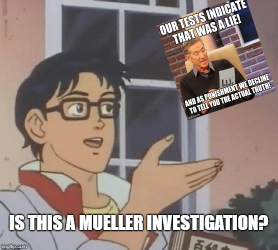 Is This A Pigeon Meme | IS THIS A MUELLER INVESTIGATION? | image tagged in memes,is this a pigeon | made w/ Imgflip meme maker