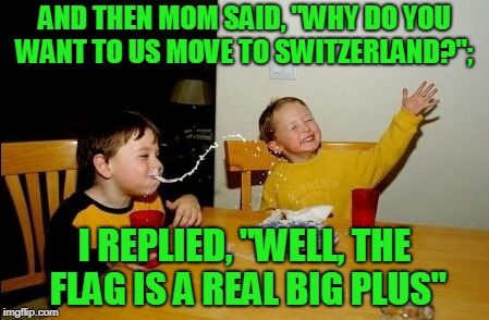 "I know it's not a true mama joke.. | AND THEN MOM SAID, ""WHY DO YOU WANT TO US MOVE TO SWITZERLAND?""; I REPLIED, ""WELL, THE FLAG IS A REAL BIG PLUS"" 