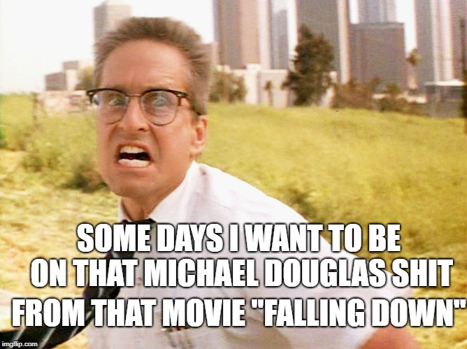 "SOME DAYS I WANT TO BE ON THAT MICHAEL DOUGLAS SHIT FROM THAT MOVIE ""FALLING DOWN"" 