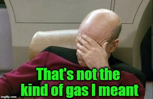 Captain Picard Facepalm Meme | That's not the kind of gas I meant | image tagged in memes,captain picard facepalm | made w/ Imgflip meme maker
