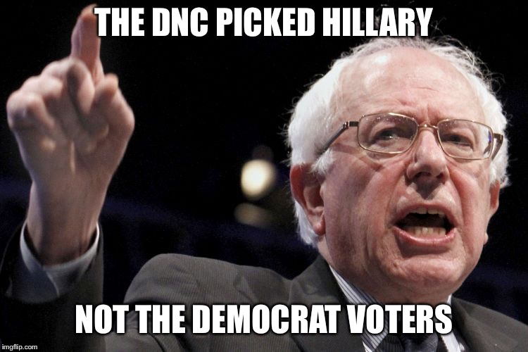 Bernie Sanders | THE DNC PICKED HILLARY NOT THE DEMOCRAT VOTERS | image tagged in bernie sanders | made w/ Imgflip meme maker