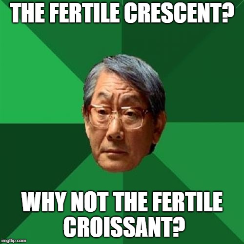 High Expectations Asian Father Meme | THE FERTILE CRESCENT? WHY NOT THE FERTILE CROISSANT? | image tagged in memes,high expectations asian father,lol so funny | made w/ Imgflip meme maker