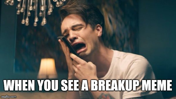 Sad Panic! at the Disco | WHEN YOU SEE A BREAKUP MEME | image tagged in sad panic at the disco | made w/ Imgflip meme maker