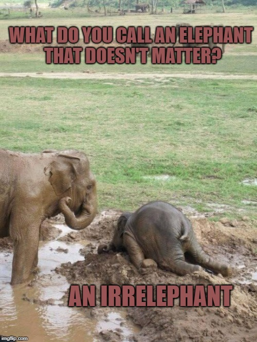 Monday Elephant | WHAT DO YOU CALL AN ELEPHANT THAT DOESN'T MATTER? AN IRRELEPHANT | image tagged in monday elephant | made w/ Imgflip meme maker