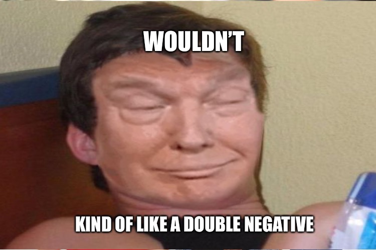WOULDN'T KIND OF LIKE A DOUBLE NEGATIVE | made w/ Imgflip meme maker