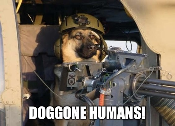 DOGGONE HUMANS! | made w/ Imgflip meme maker