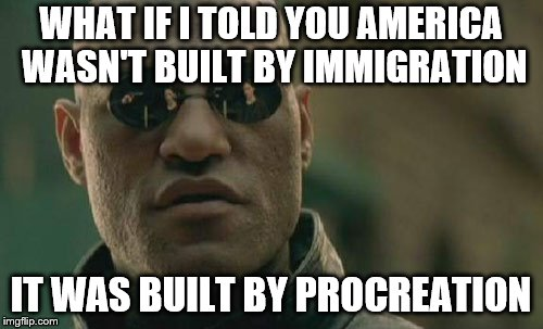 Matrix Morpheus Meme | WHAT IF I TOLD YOU AMERICA WASN'T BUILT BY IMMIGRATION IT WAS BUILT BY PROCREATION | image tagged in memes,matrix morpheus | made w/ Imgflip meme maker