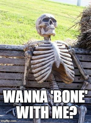 The Bone Pun | WANNA 'BONE' WITH ME? | image tagged in memes,waiting skeleton | made w/ Imgflip meme maker
