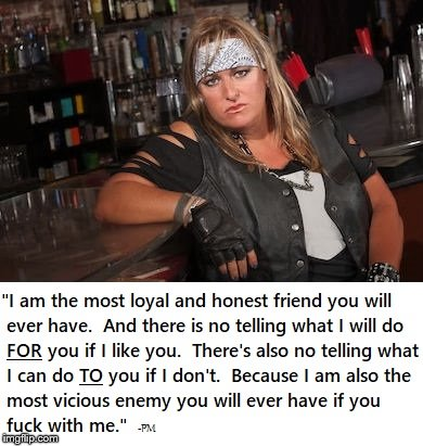 Biker Chick | image tagged in warning label | made w/ Imgflip meme maker