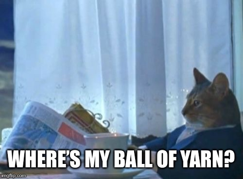 I Should Buy A Boat Cat Meme | WHERE'S MY BALL OF YARN? | image tagged in memes,i should buy a boat cat | made w/ Imgflip meme maker