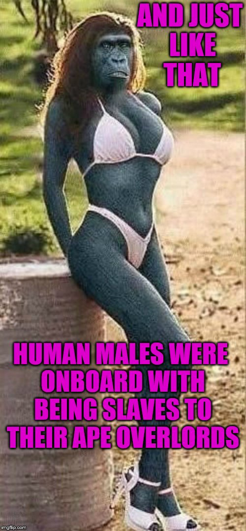 I wonder why... | AND JUST LIKE THAT HUMAN MALES WERE ONBOARD WITH BEING SLAVES TO THEIR APE OVERLORDS | image tagged in memes,ape girl,planet of the apes,slaves | made w/ Imgflip meme maker