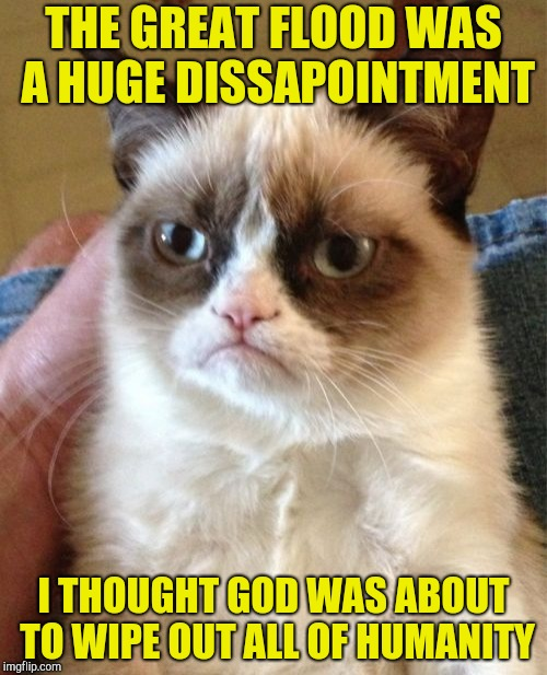 Grumpy Cat | THE GREAT FLOOD WAS A HUGE DISSAPOINTMENT I THOUGHT GOD WAS ABOUT TO WIPE OUT ALL OF HUMANITY | image tagged in memes,grumpy cat,flood,bible,powermetalhead,funny | made w/ Imgflip meme maker