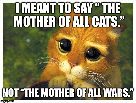 "Shrek Cat Meme | I MEANT TO SAY "" THE MOTHER OF ALL CATS."" NOT ""THE MOTHER OF ALL WARS."" 