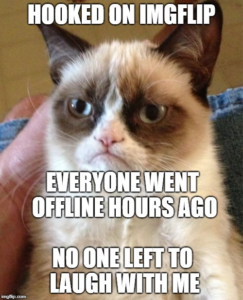 Imgflip virgin (that's me) | HOOKED ON IMGFLIP EVERYONE WENT OFFLINE HOURS AGO NO ONE LEFT TO LAUGH WITH ME | image tagged in memes,grumpy cat | made w/ Imgflip meme maker