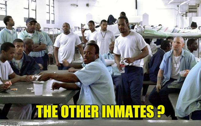 Black Inmates | THE OTHER INMATES ? | image tagged in black inmates | made w/ Imgflip meme maker