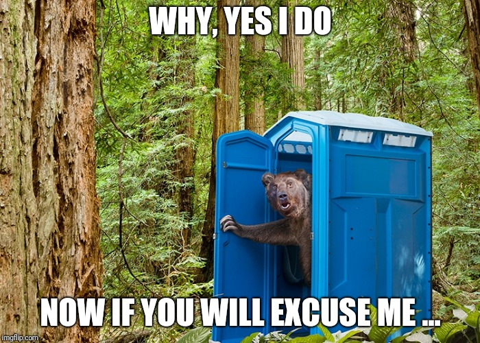 Outhouse Bear | WHY, YES I DO NOW IF YOU WILL EXCUSE ME ... | image tagged in outhouse bear,dumb joke | made w/ Imgflip meme maker